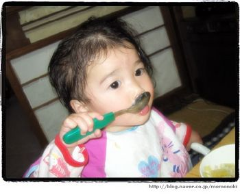 20053199282371959239-momonoki.jpg